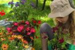 Des idées de cadeau pour un passionné de jardinage